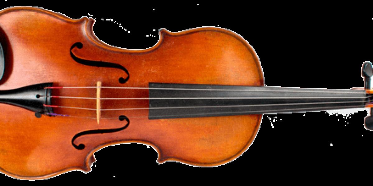 Photo of a violin